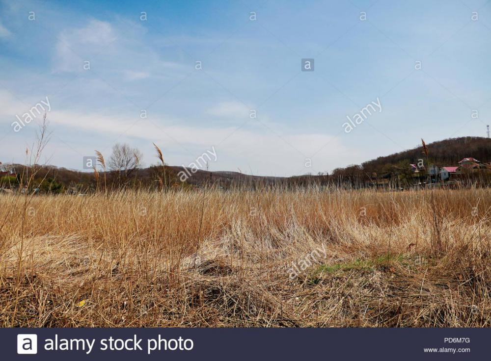 a-barren-desolate-field-with-dried-yellow-grass-hills-and-houses-under-the-vibrant-blue-sky-on-a-warm-autumn-or-spring-day-countryside-landscape-tra-PD6M7G.jpg