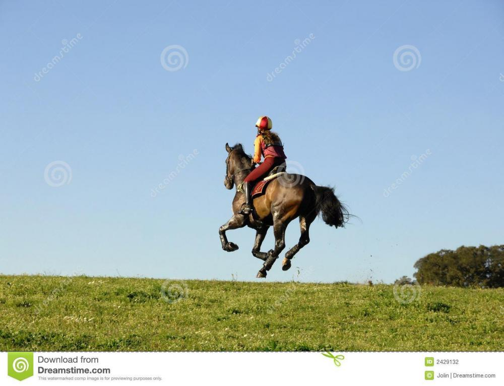 horseman-galloping-2429132.jpg